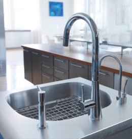 Frank Stainless Faucet